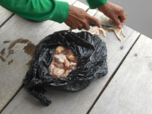 ピラニア釣りの餌となる鶏肉