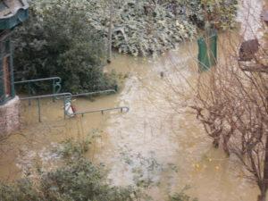 氾濫したセーヌ川