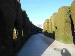 セカーノの散歩道