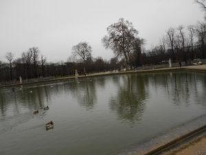 寒そうなチュイルリー公園