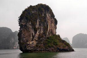 横顔がゴリラに見えるゴリラ岩